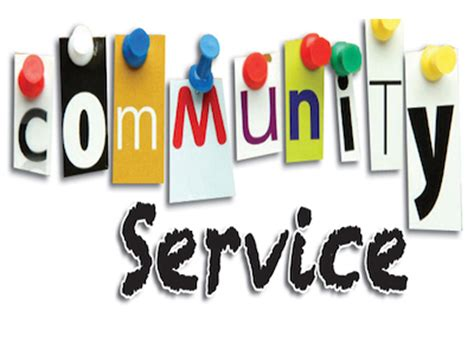 Community Service Experience Essay Example for Free